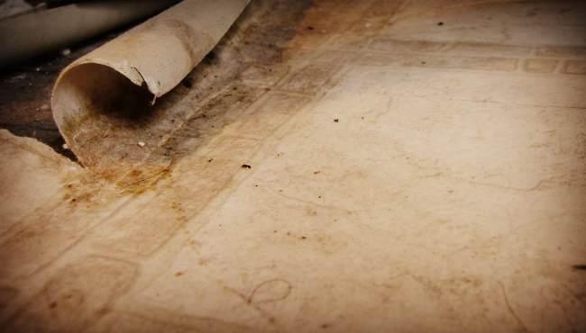 Демонтаж старого линолеума