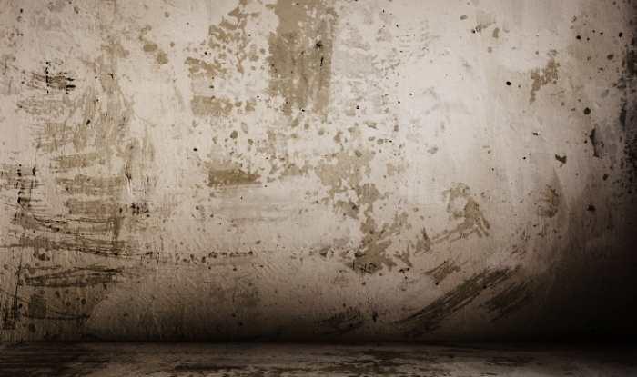 Загрунтованная стена из бетона для оштукатуривания